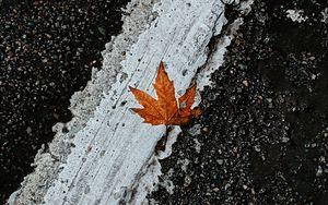 Preview wallpaper asphalt, leaf, maple, marking, road