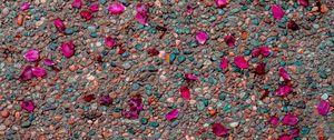 Preview wallpaper asphalt, petals, pebbles, colorful