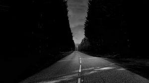 Preview wallpaper asphalt, road, trees, bw
