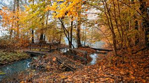 Preview wallpaper autumn, bridges, trees, wood, leaves, yellow, water