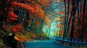 Preview wallpaper autumn, road, leaves