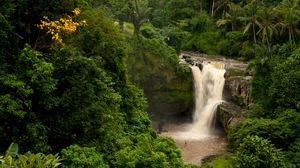 Preview wallpaper bali, indonesia, waterfall, forest, palm trees, rock
