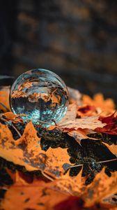 Preview wallpaper ball, glass, autumn, foliage, reflection