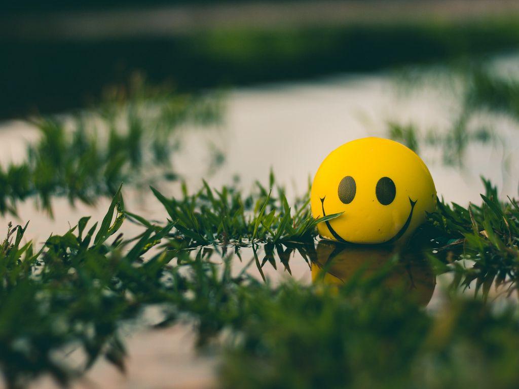 1024x768 Wallpaper ball, smile, smiley, grass, water