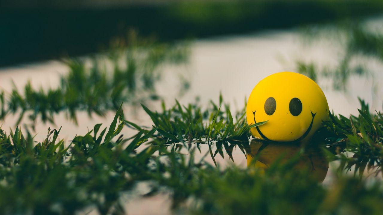 1280x720 Wallpaper ball, smile, smiley, grass, water