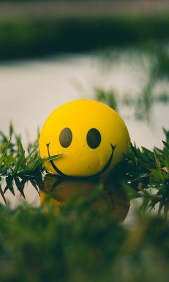 240x400 Wallpaper ball, smile, smiley, grass, water