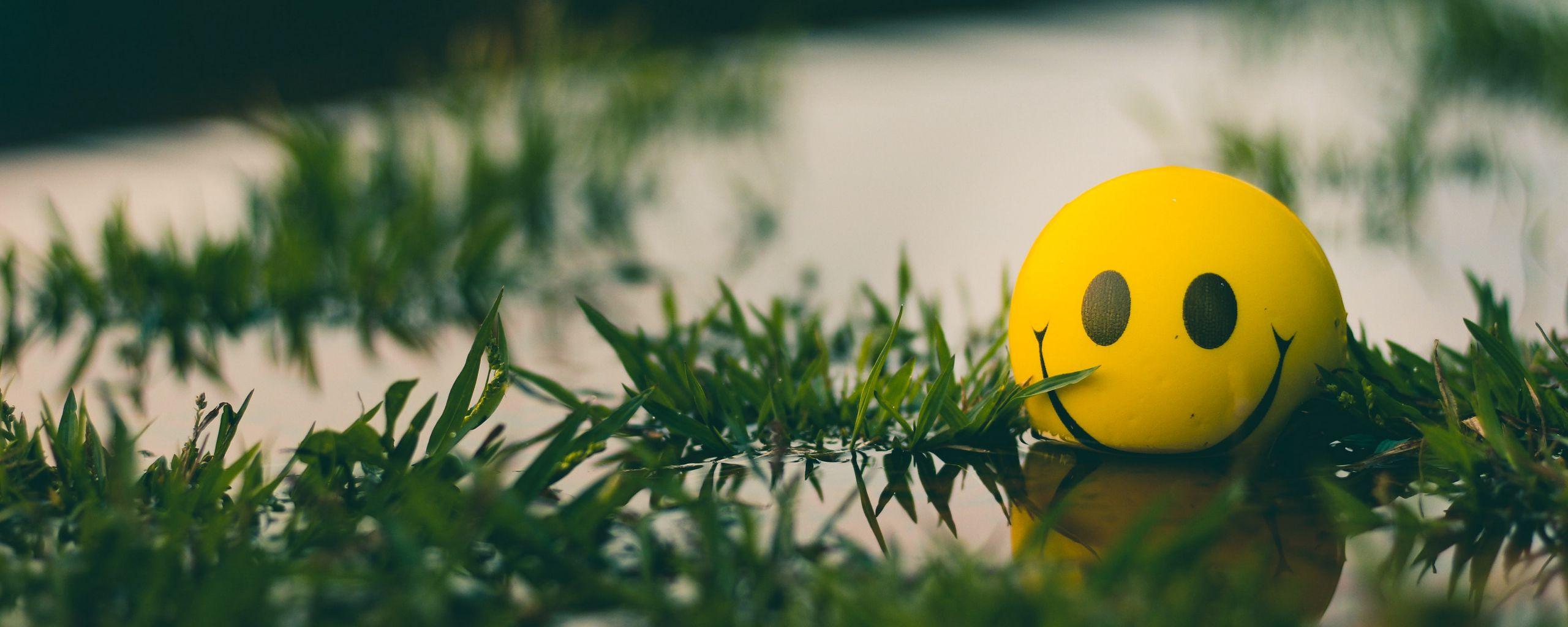 2560x1024 Wallpaper ball, smile, smiley, grass, water