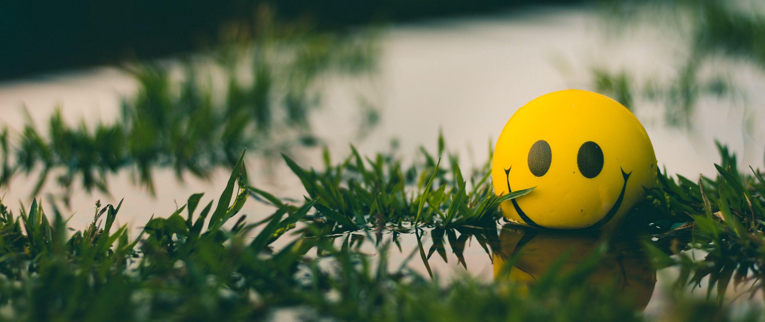 2560x1080 Wallpaper ball, smile, smiley, grass, water