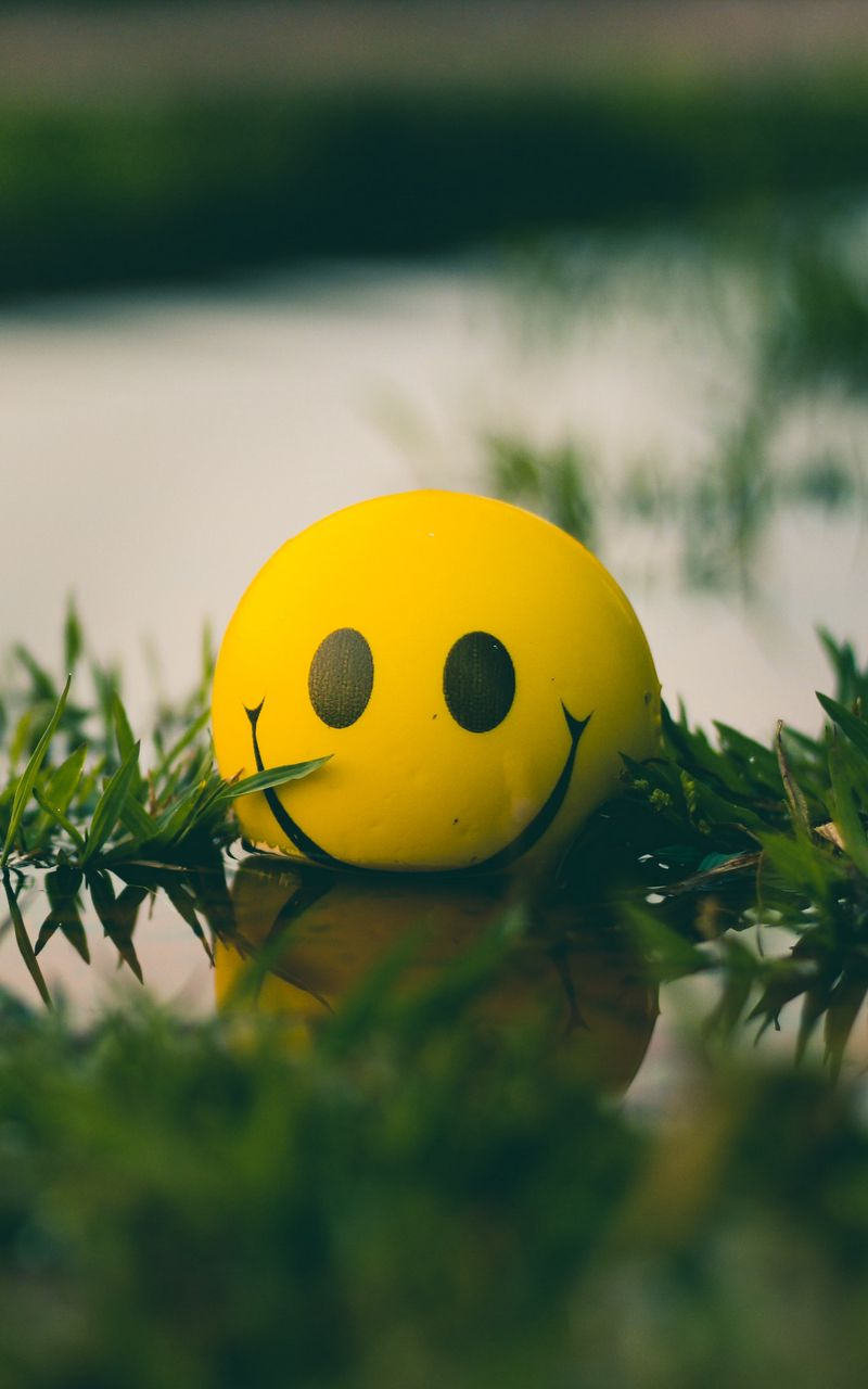 800x1280 Wallpaper ball, smile, smiley, grass, water