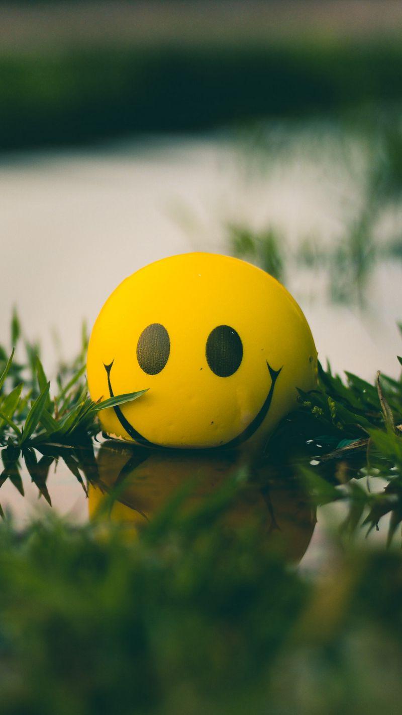 800x1420 Wallpaper ball, smile, smiley, grass, water
