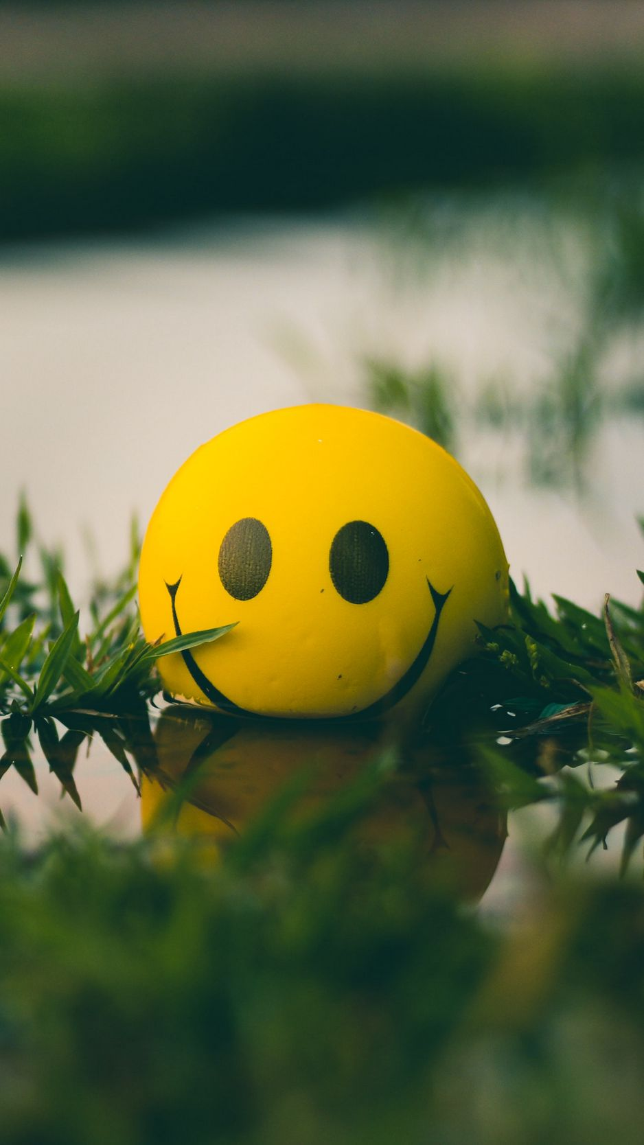 938x1668 Wallpaper ball, smile, smiley, grass, water