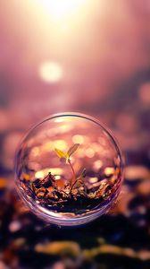 Preview wallpaper ball, flight, plant