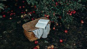 Preview wallpaper basket, book, apples, harvest