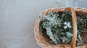 Preview wallpaper basket, flowers, grass