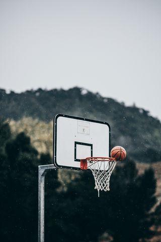 320x480 Wallpaper basketball, ball, basketball hoop, throw