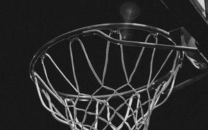Preview wallpaper basketball ring, bw, net, basketball