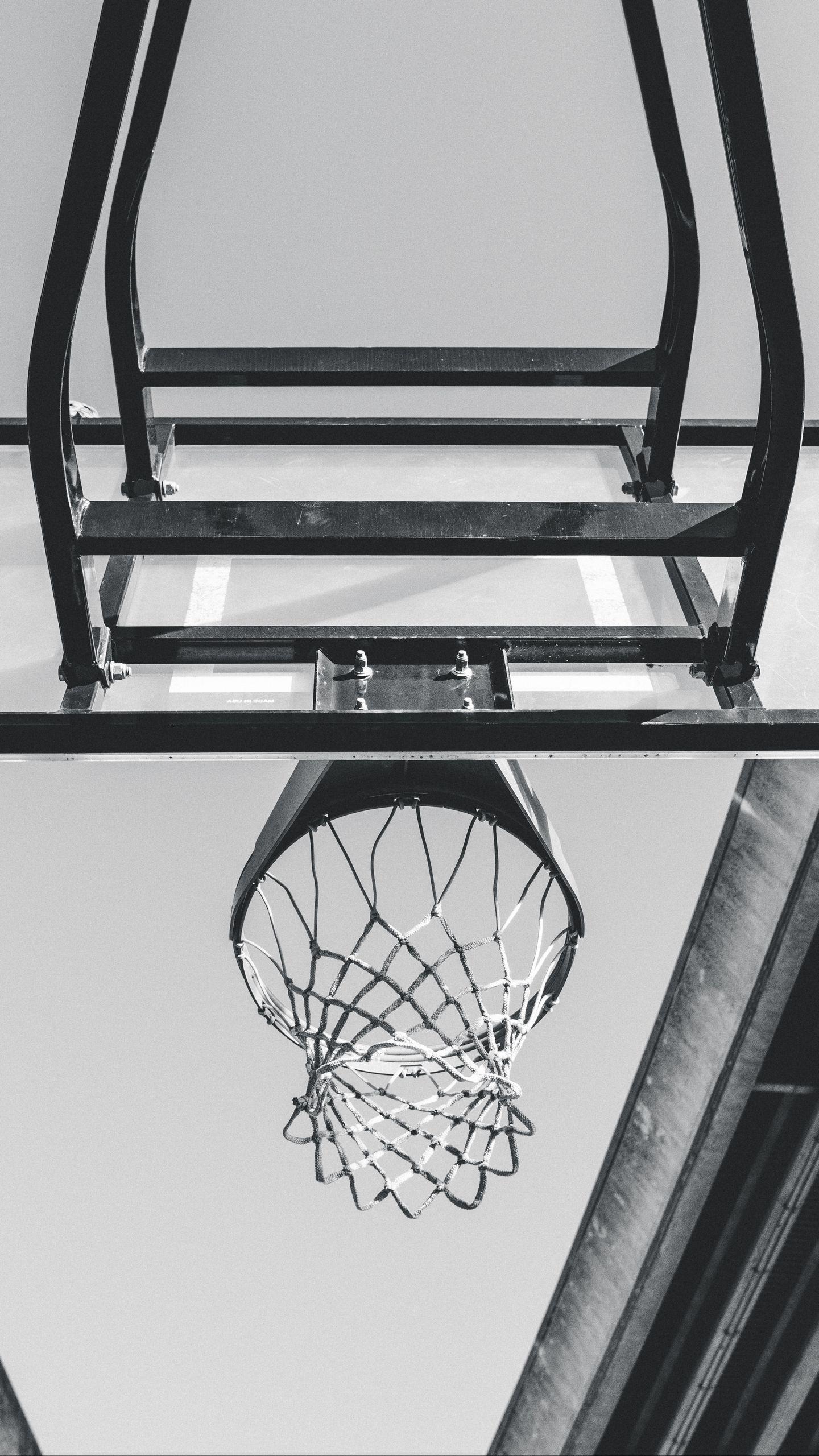 1440x2560 Wallpaper basketball, ring, mesh, bw