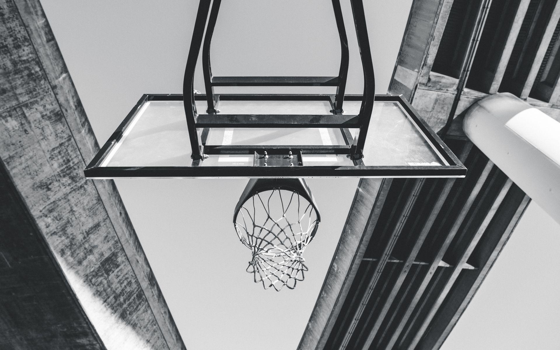 1920x1200 Wallpaper basketball, ring, mesh, bw