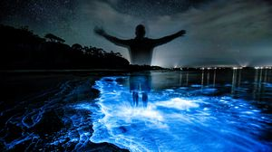 Preview wallpaper silhouette, night, water, luminescence, glow