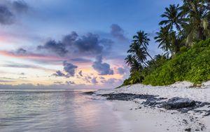 Preview wallpaper beach, palms, sand, ocean