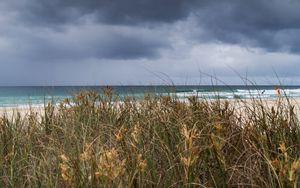Preview wallpaper beach, sand, grass, sea, landscape