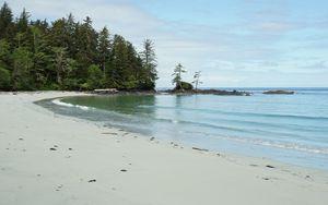 Preview wallpaper beach, sand, sea, trees, landscape