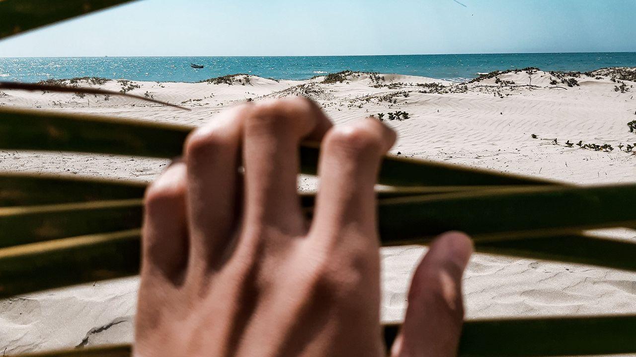 【壁纸桌面】海滩,大海,手,沙滩,树叶高清壁纸免费下载