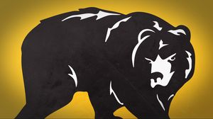 Preview wallpaper bear, drawing, animal