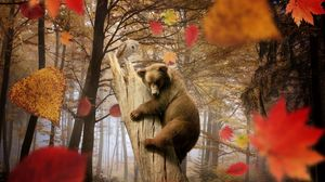 Preview wallpaper bear, owl, autumn, leaves, leaf fall, mushroom, forest, trees