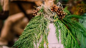Preview wallpaper bell, branches, cones, decoration, christmas, new year