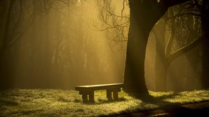 Preview wallpaper bench, forest, fog