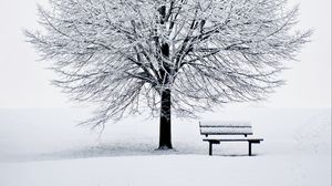 Preview wallpaper bench, snow, winter, wood, minimalism