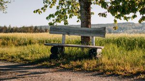 Preview wallpaper bench, tree, branches, road