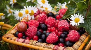 Preview wallpaper berries, raspberries, gooseberries, currants, chamomile, basket