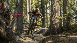 Preview wallpaper bicycle, cyclist, sport, forest