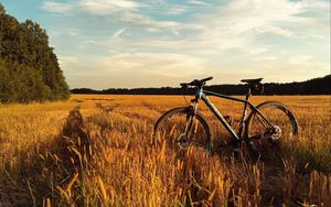 Preview wallpaper bicycle, field, grass, horizon, sky