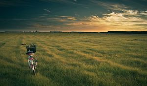 Preview wallpaper bicycle, field, grass, evening