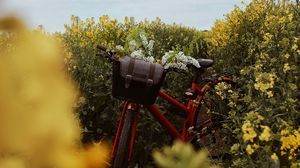 Preview wallpaper bicycle, flowers, field