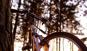 Preview wallpaper bicycle, sunlight, summer