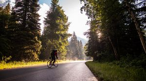 Preview wallpaper bicycle, tourist, cyclist, road, trees