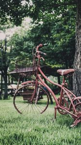 Preview wallpaper bicycle, vintage, decoration, garden