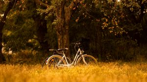 Preview wallpaper bike, transport, trees, forest