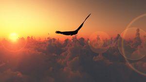 Preview wallpaper bird, flight, sun, patches of light, clouds, freedom, height