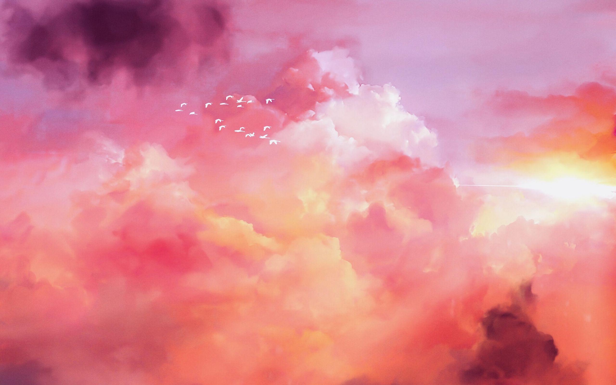 2560x1600 Wallpaper birds, flock, pink, sky