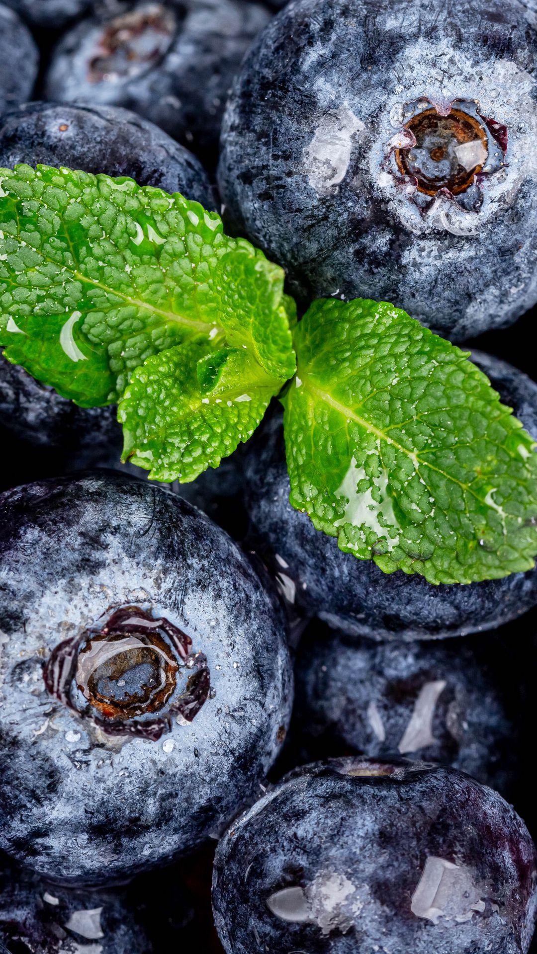 1080x1920 Wallpaper blueberries, berries, mint, wet, macro
