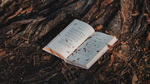Preview wallpaper book, tree, forest