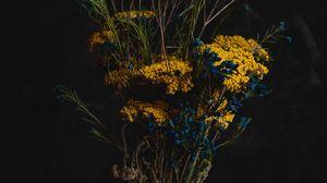 Preview wallpaper bouquet, flowers, composition, vase