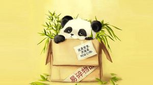 Preview wallpaper box, panda, grass, paper, drawing