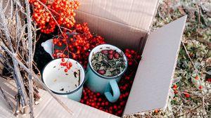 Preview wallpaper box, rowan, mugs, branches, berries