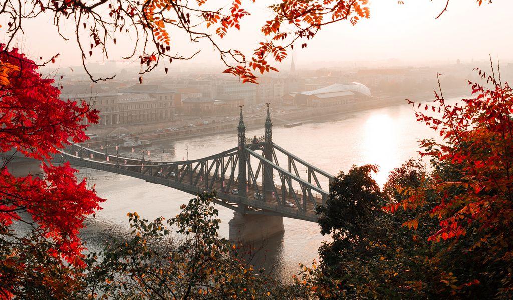 1024x600 Wallpaper bridge, autumn, city, citadella, budapest, hungary